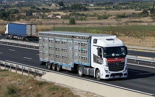 Descanso semanal transporte de mercancías